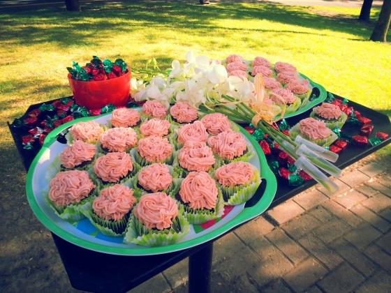 damn cupcakes 1